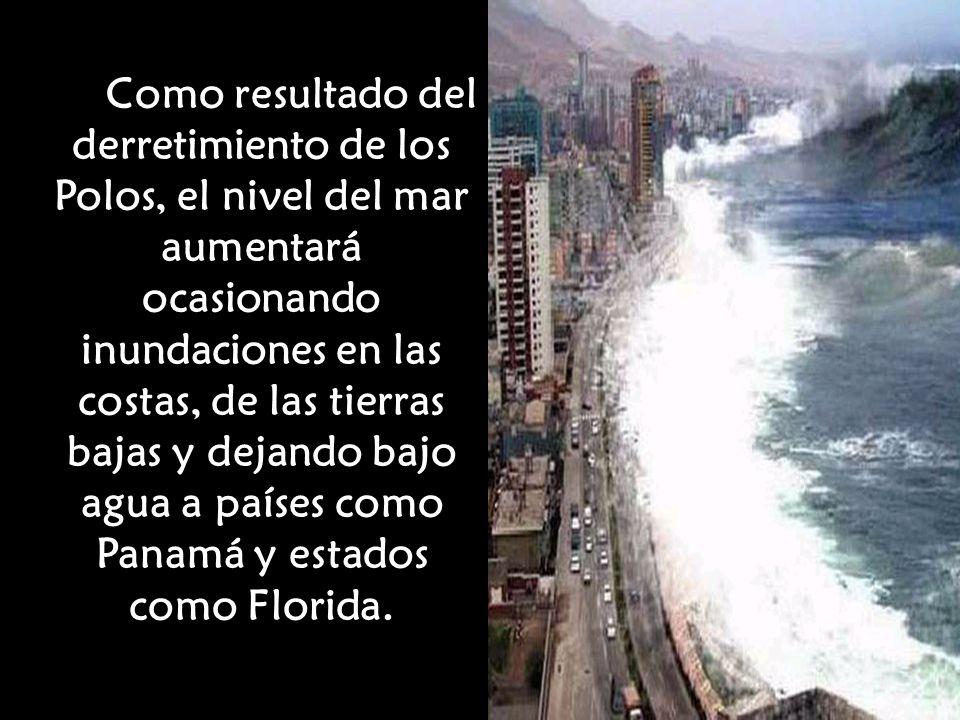 Como resultado del derretimiento de los Polos, el nivel del mar aumentará ocasionando inundaciones en las costas, de las tierras bajas y dejando bajo agua a países como Panamá y estados como Florida.