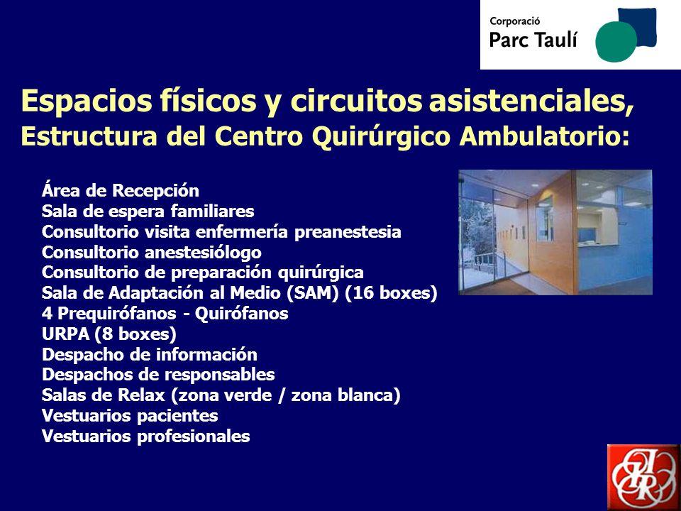 Espacios físicos y circuitos asistenciales, Estructura del Centro Quirúrgico Ambulatorio:
