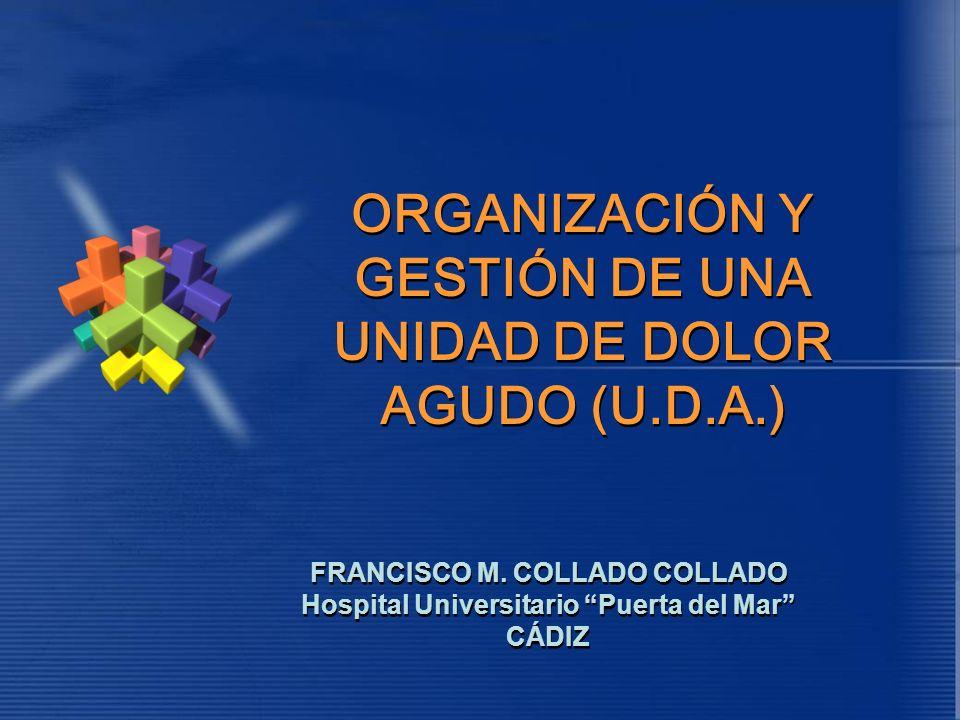 ORGANIZACIÓN Y GESTIÓN DE UNA UNIDAD DE DOLOR AGUDO (U.D.A.)