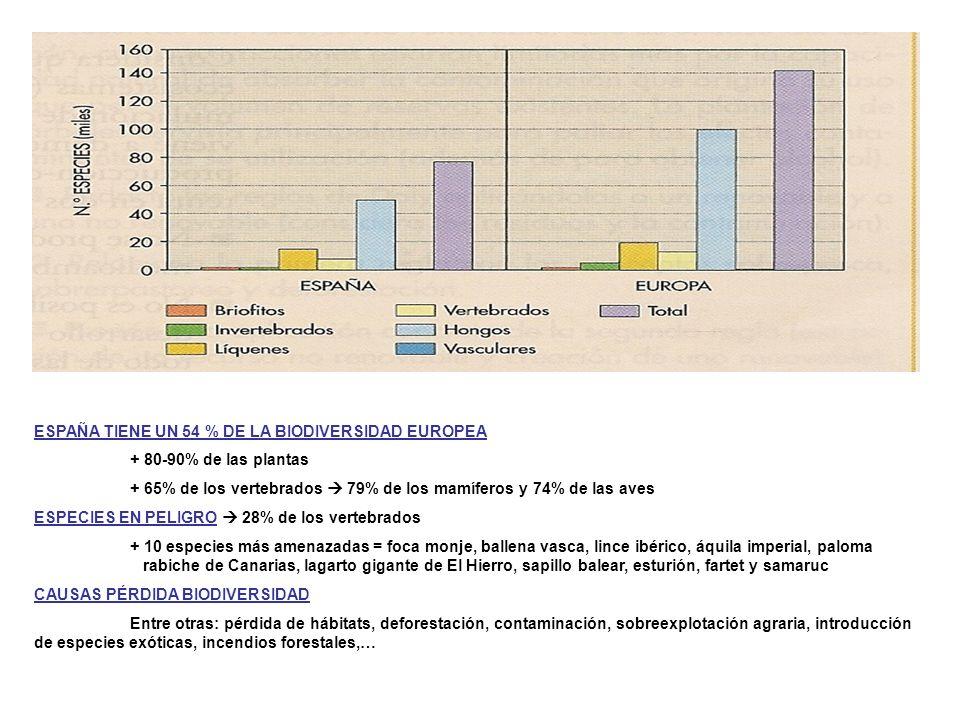 ESPAÑA TIENE UN 54 % DE LA BIODIVERSIDAD EUROPEA