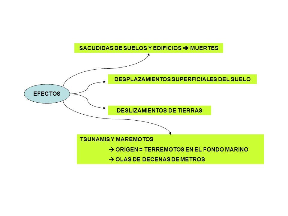 SACUDIDAS DE SUELOS Y EDIFICIOS  MUERTES