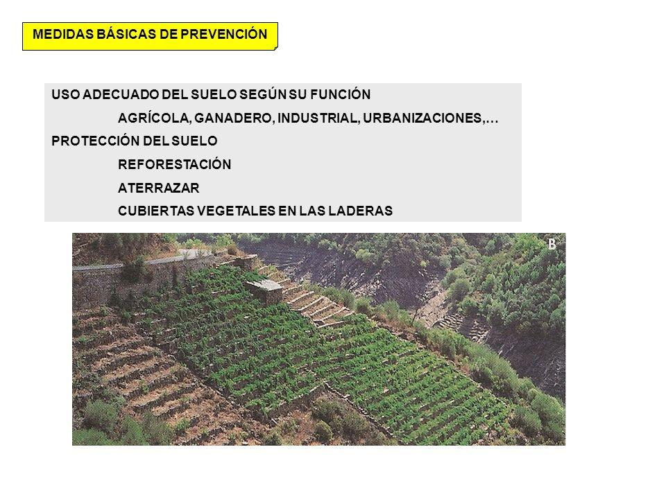 MEDIDAS BÁSICAS DE PREVENCIÓN