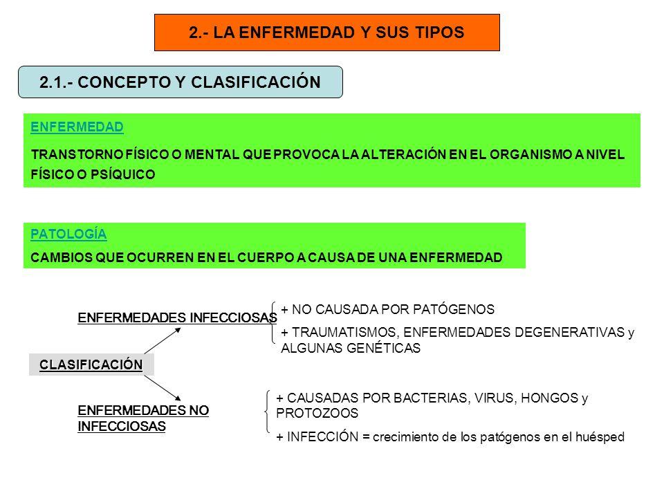 2.- LA ENFERMEDAD Y SUS TIPOS 2.1.- CONCEPTO Y CLASIFICACIÓN