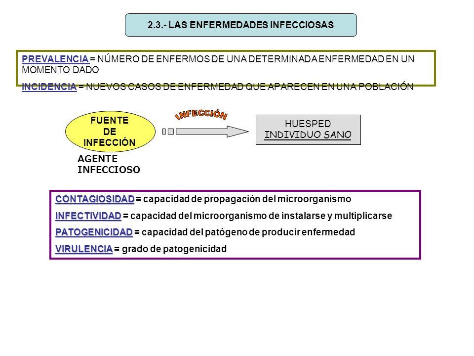 2.3.- LAS ENFERMEDADES INFECCIOSAS