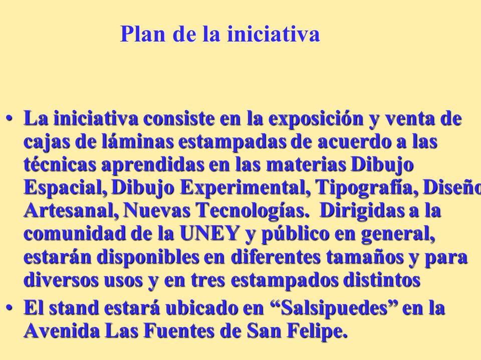 Plan de la iniciativa