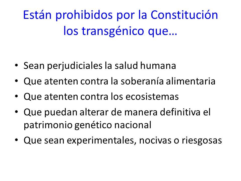 Están prohibidos por la Constitución los transgénico que…