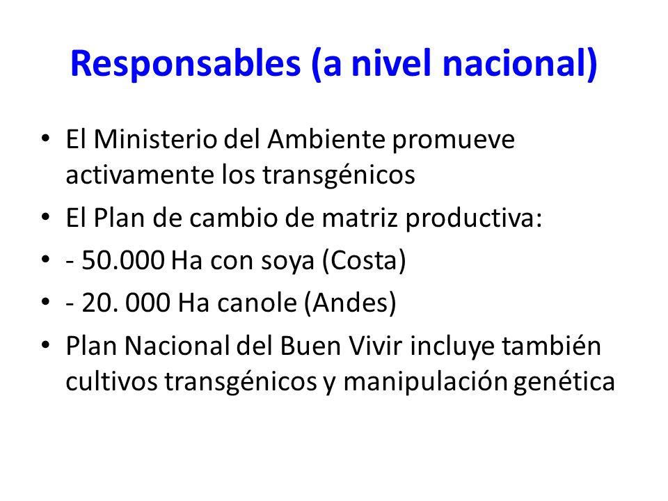 Responsables (a nivel nacional)