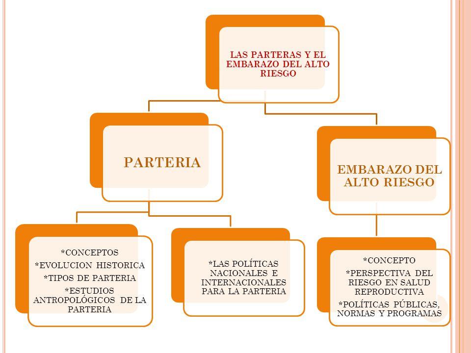 LAS PARTERAS Y EL EMBARAZO DEL ALTO RIESGO EMBARAZO DEL ALTO RIESGO