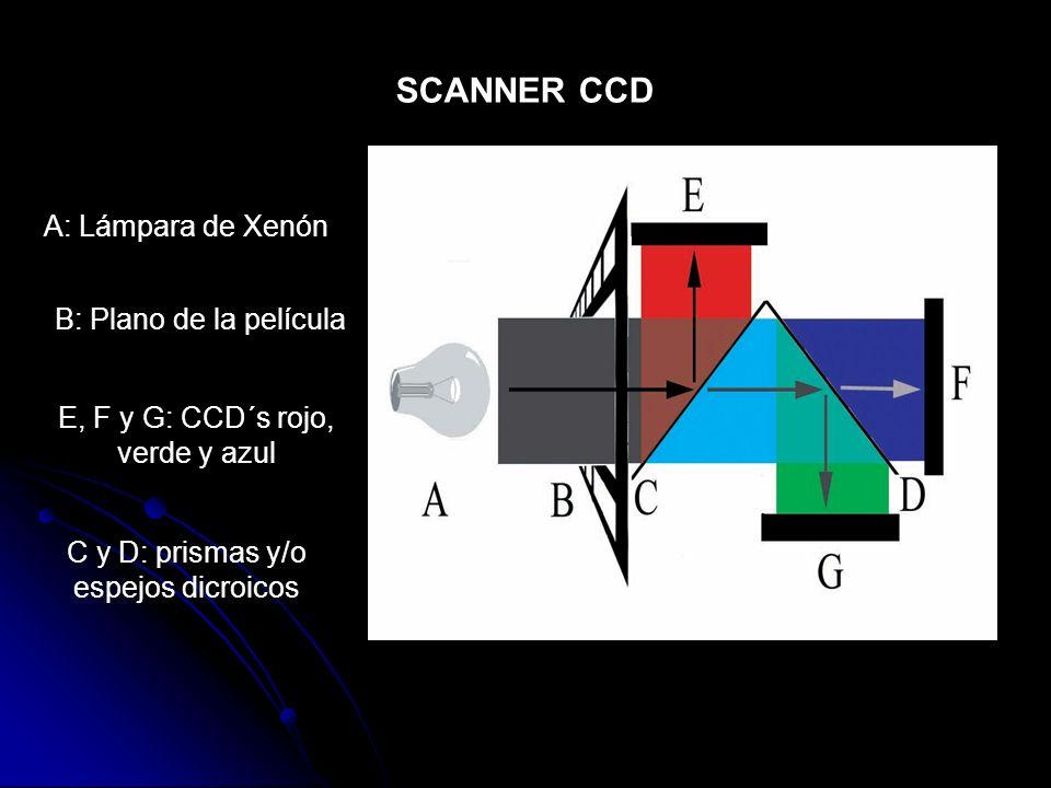 SCANNER CCD A: Lámpara de Xenón B: Plano de la película