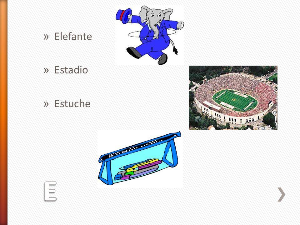 Elefante Estadio Estuche E