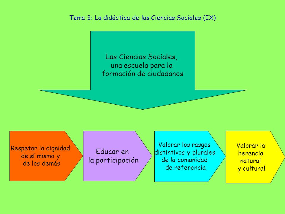 Tema 3: La didáctica de las Ciencias Sociales (IX)