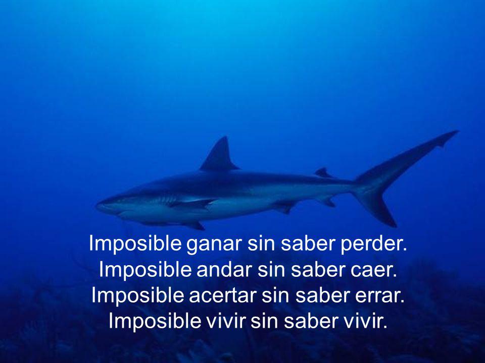 Imposible ganar sin saber perder. Imposible andar sin saber caer.