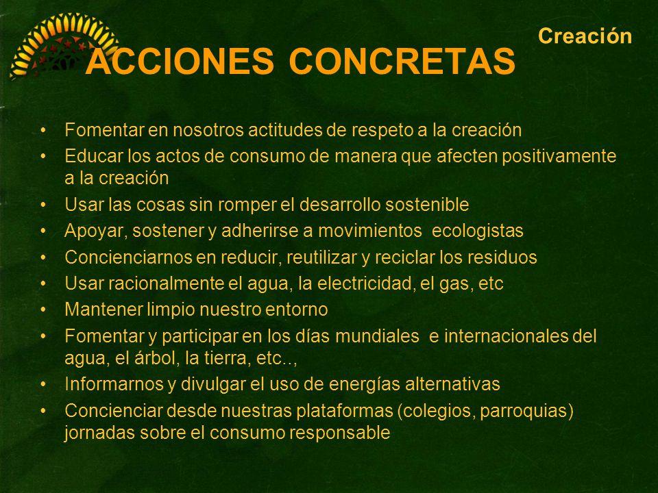 ACCIONES CONCRETAS Creación