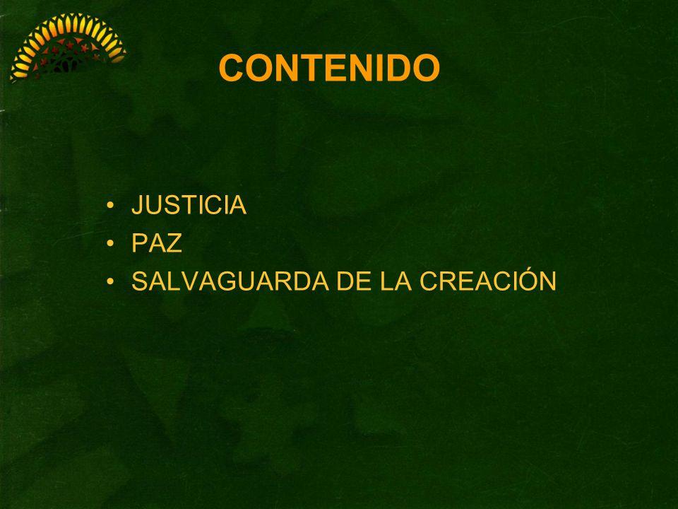 CONTENIDO JUSTICIA PAZ SALVAGUARDA DE LA CREACIÓN