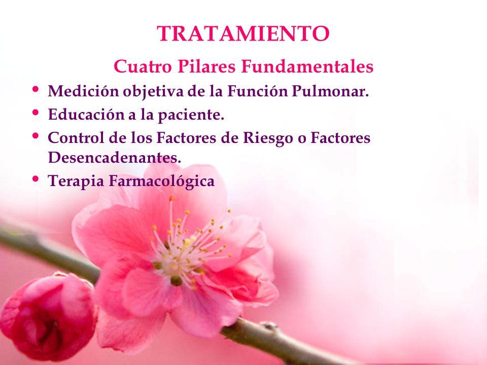 Cuatro Pilares Fundamentales