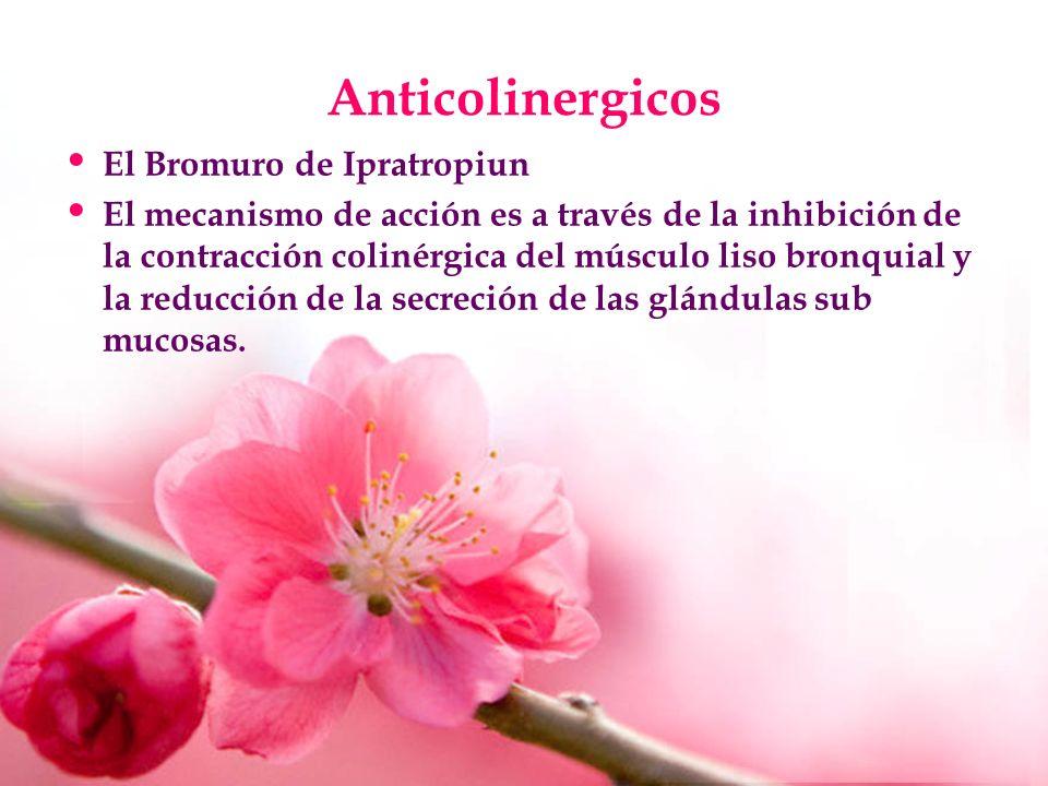 Anticolinergicos El Bromuro de Ipratropiun