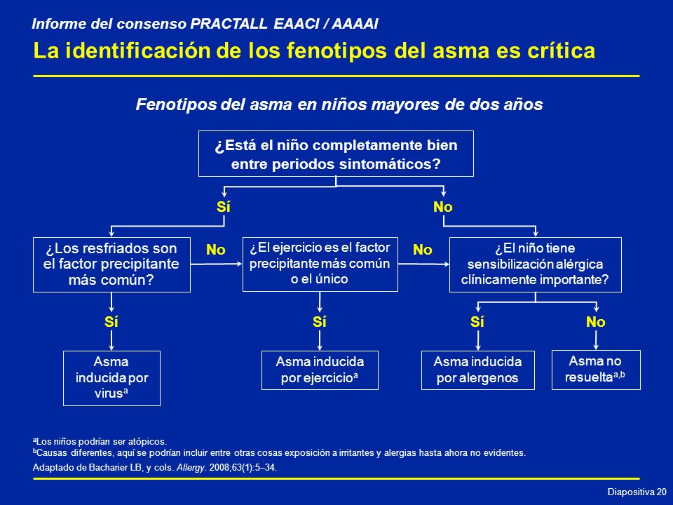 La identificación de los fenotipos del asma es crítica