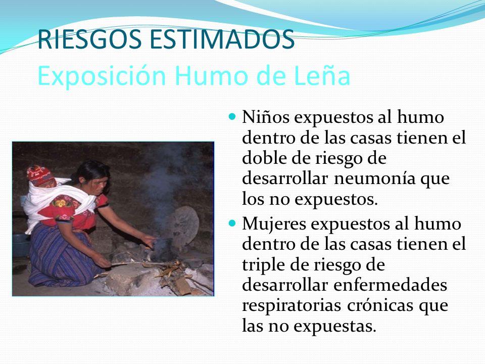 RIESGOS ESTIMADOS Exposición Humo de Leña