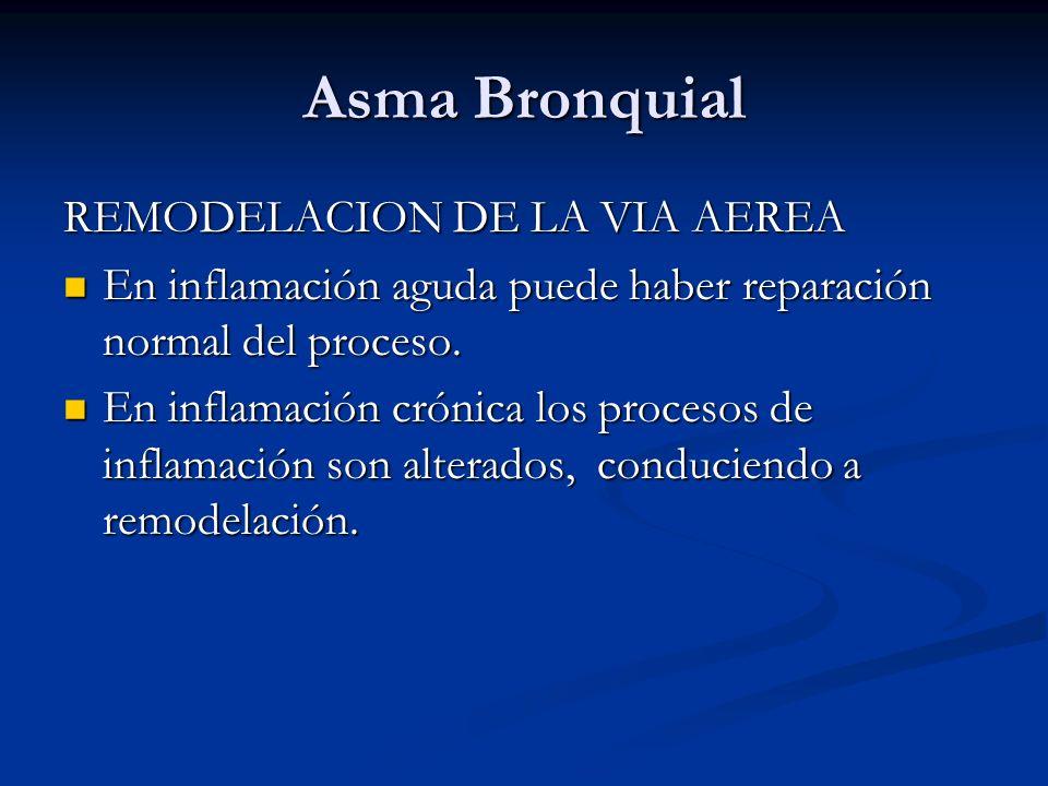 Asma Bronquial REMODELACION DE LA VIA AEREA