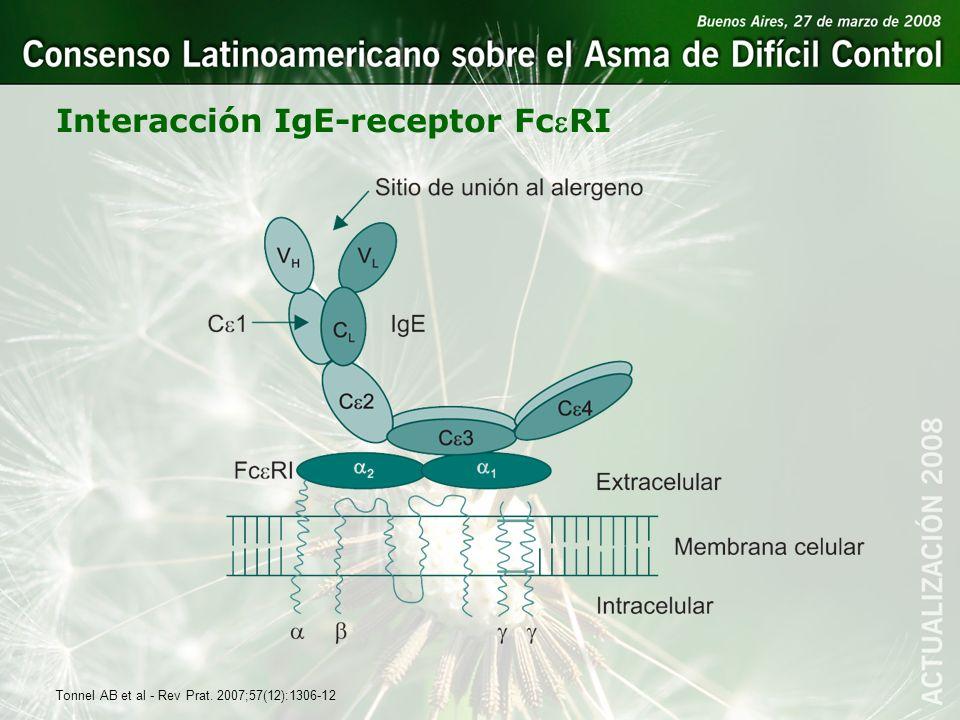 Interacción IgE-receptor FceRI