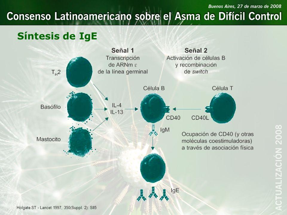 Síntesis de IgE Holgate ST - Lancet 1997, 350(Suppl. 2): SII5