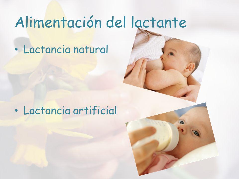 Alimentación del lactante