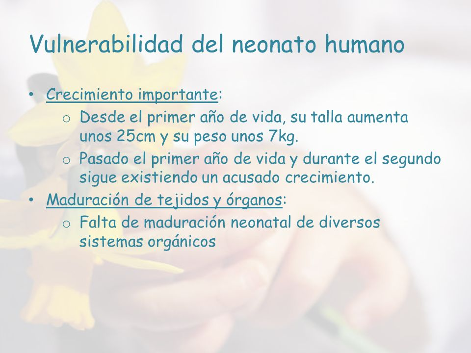 Vulnerabilidad del neonato humano
