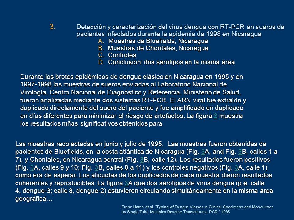 Detección y caracterización del virus dengue con RT-PCR en sueros de pacientes infectados durante la epidemia de 1998 en Nicaragua A. Muestras de Bluefields, Nicaragua B. Muestras de Chontales, Nicaragua C. Controles D. Conclusion: dos serotipos en la misma área