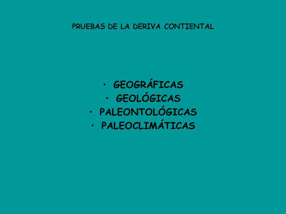PRUEBAS DE LA DERIVA CONTIENTAL