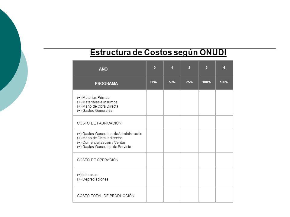 Estructura de Costos según ONUDI