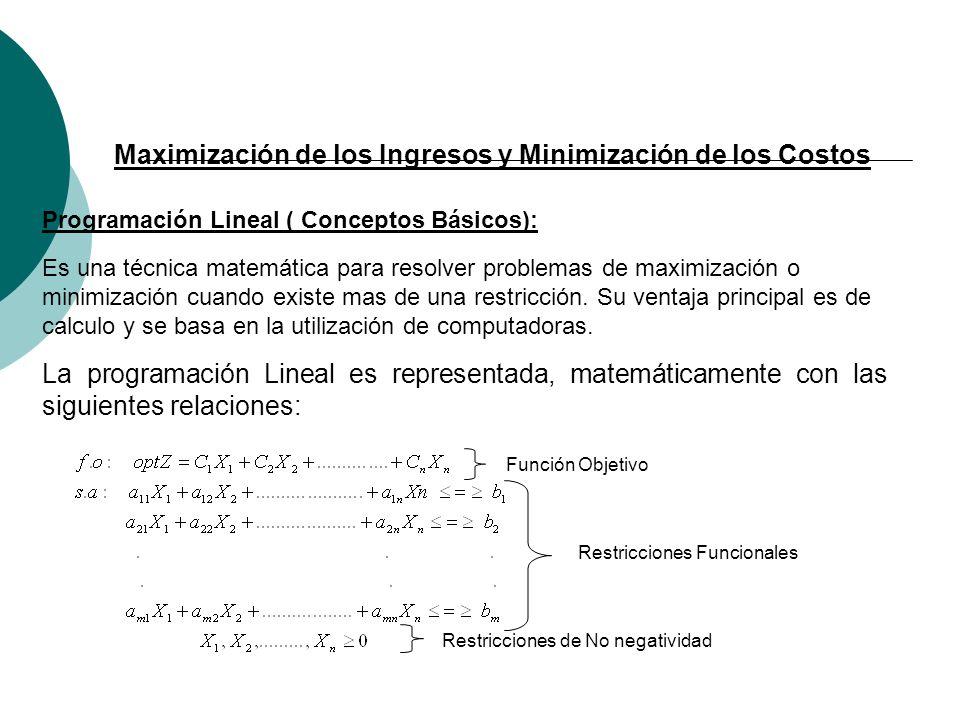 Maximización de los Ingresos y Minimización de los Costos