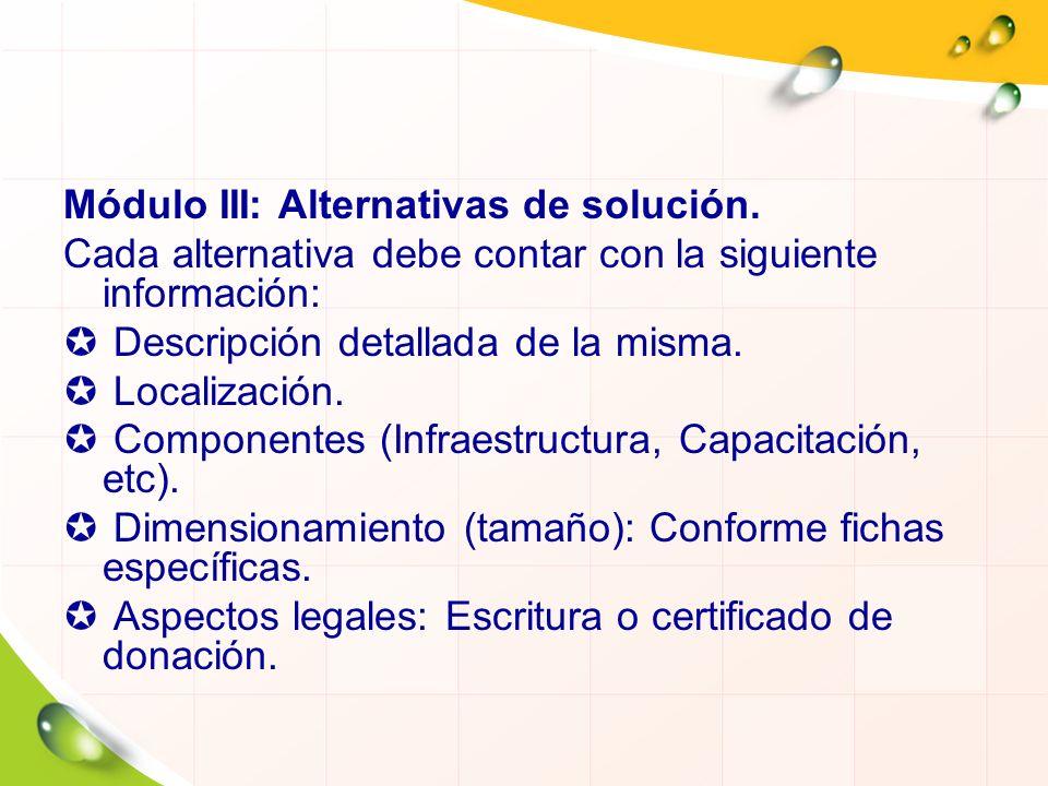 Módulo III: Alternativas de solución.