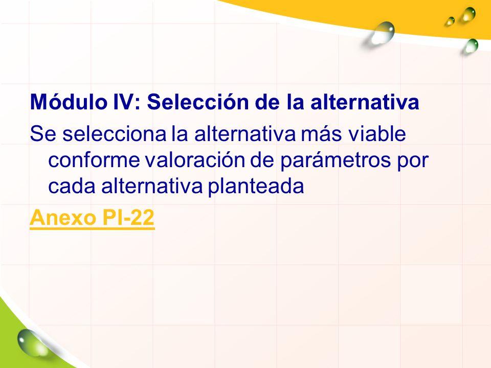 Módulo IV: Selección de la alternativa