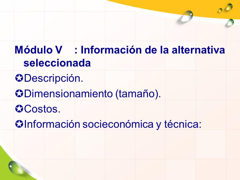 Módulo V : Información de la alternativa seleccionada