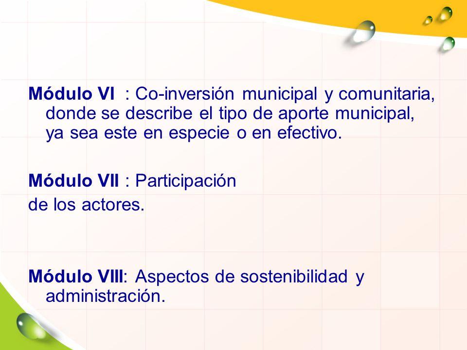 Módulo VI : Co-inversión municipal y comunitaria, donde se describe el tipo de aporte municipal, ya sea este en especie o en efectivo.
