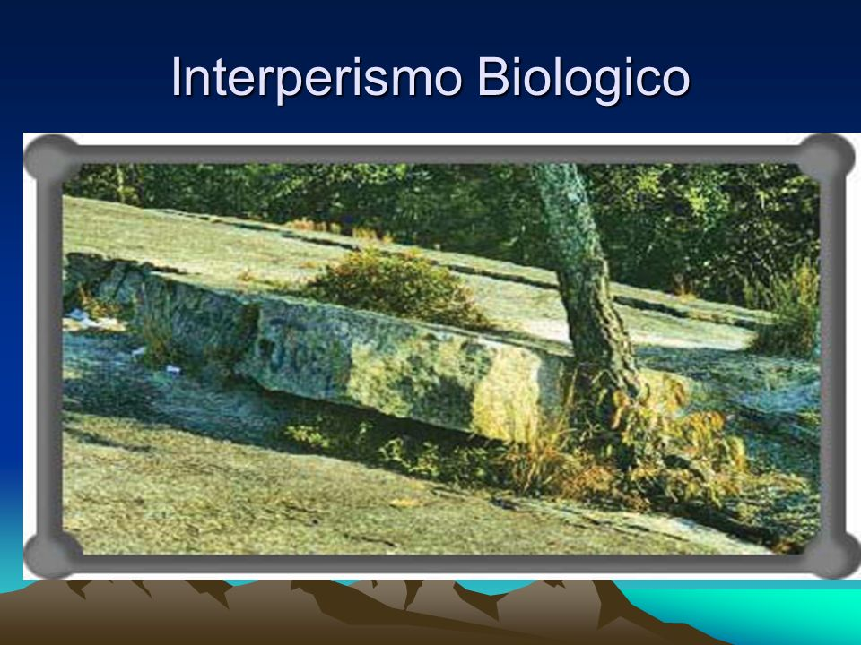 Interperismo Biologico