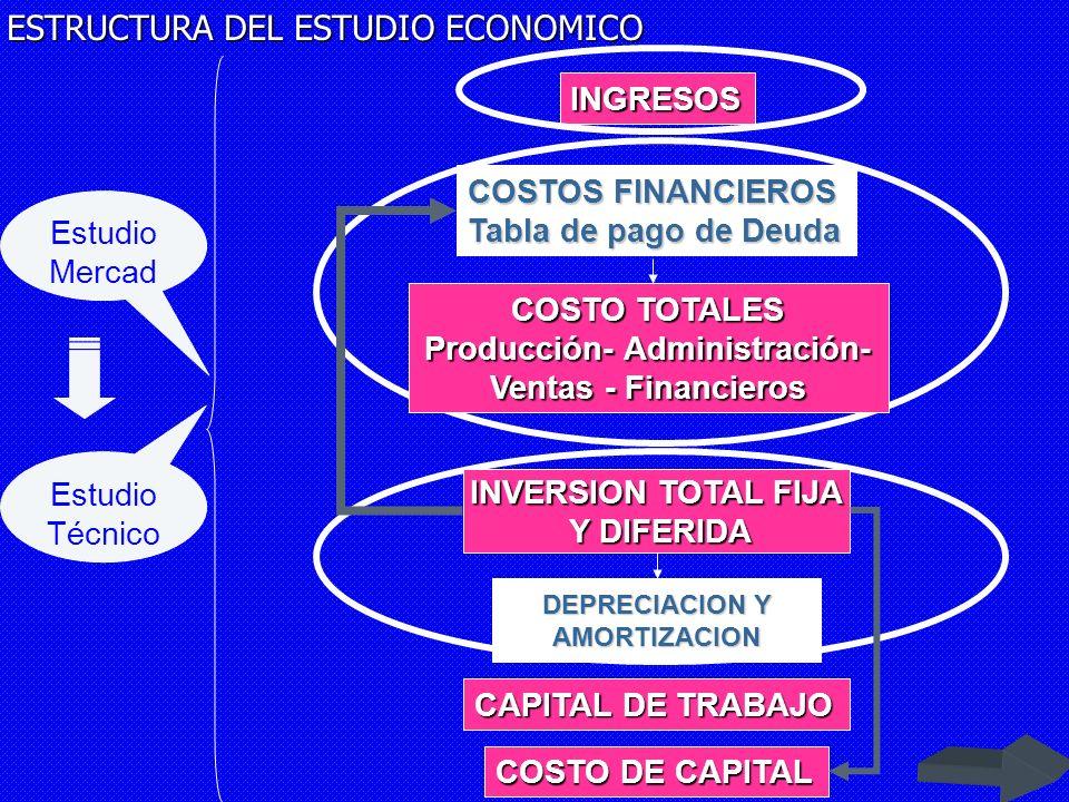 ESTRUCTURA DEL ESTUDIO ECONOMICO