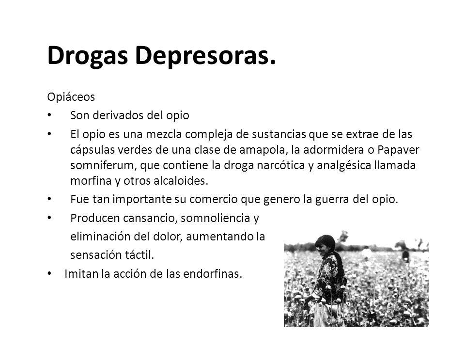 Drogas Depresoras. Opiáceos Son derivados del opio