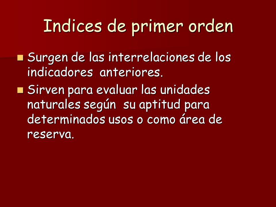 Indices de primer orden