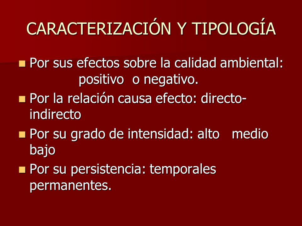 CARACTERIZACIÓN Y TIPOLOGÍA