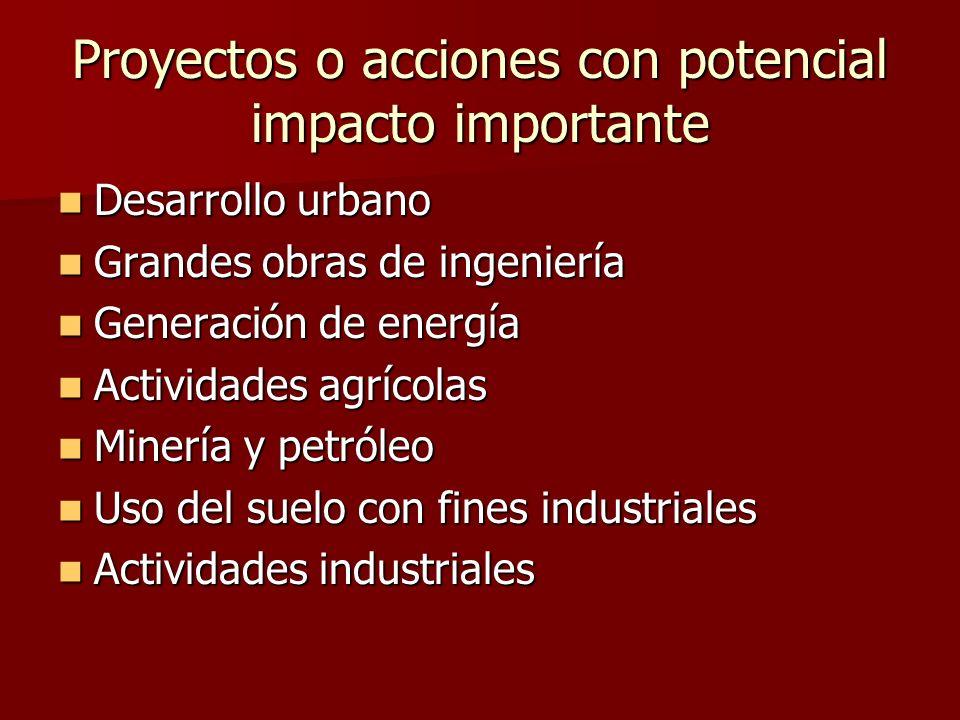 Proyectos o acciones con potencial impacto importante