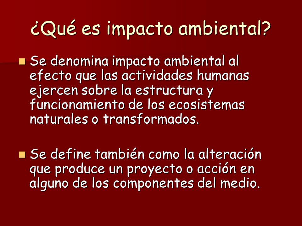 ¿Qué es impacto ambiental
