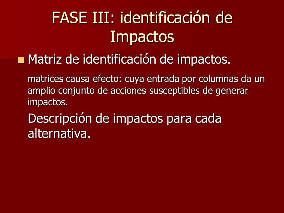 FASE III: identificación de Impactos
