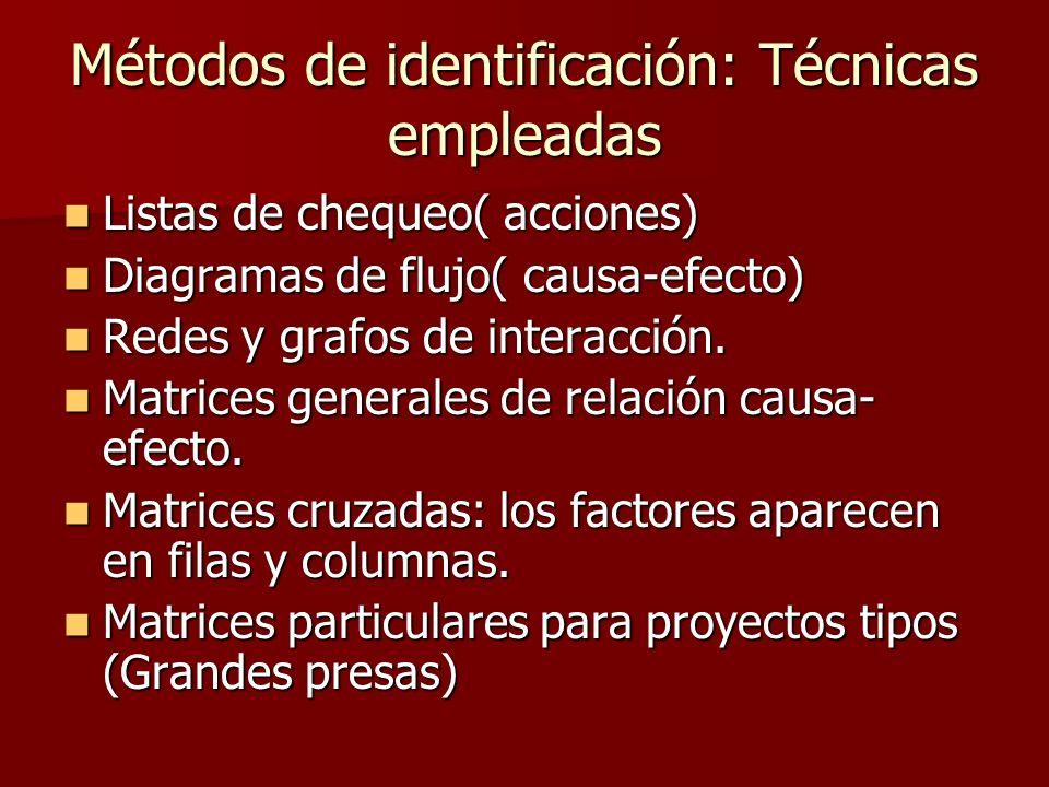 Métodos de identificación: Técnicas empleadas