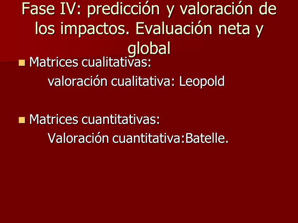 Fase IV: predicción y valoración de los impactos