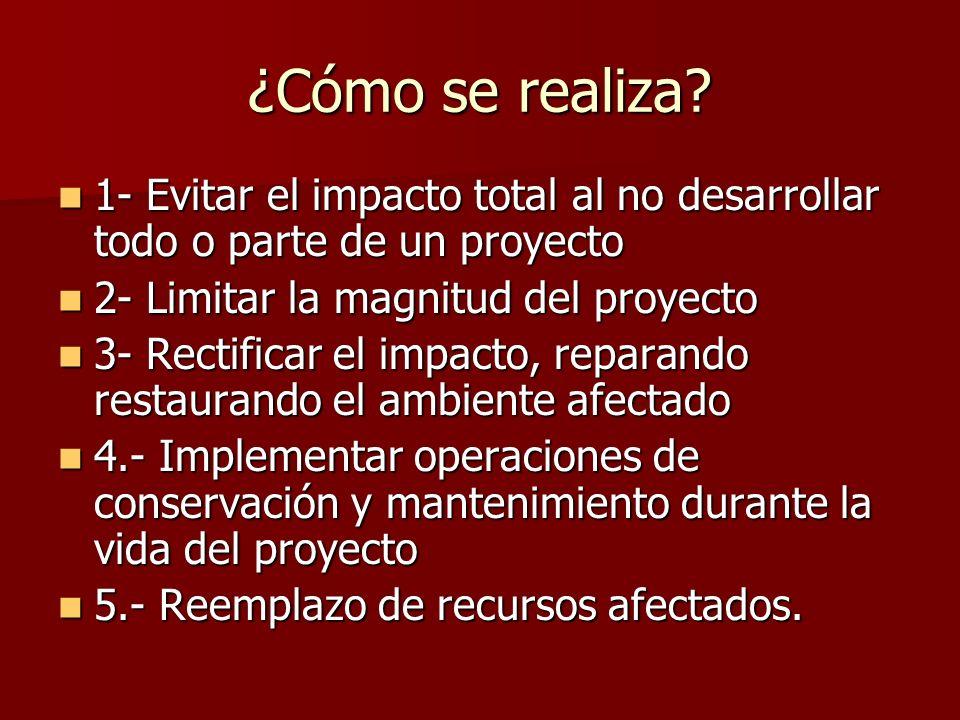 ¿Cómo se realiza 1- Evitar el impacto total al no desarrollar todo o parte de un proyecto. 2- Limitar la magnitud del proyecto.