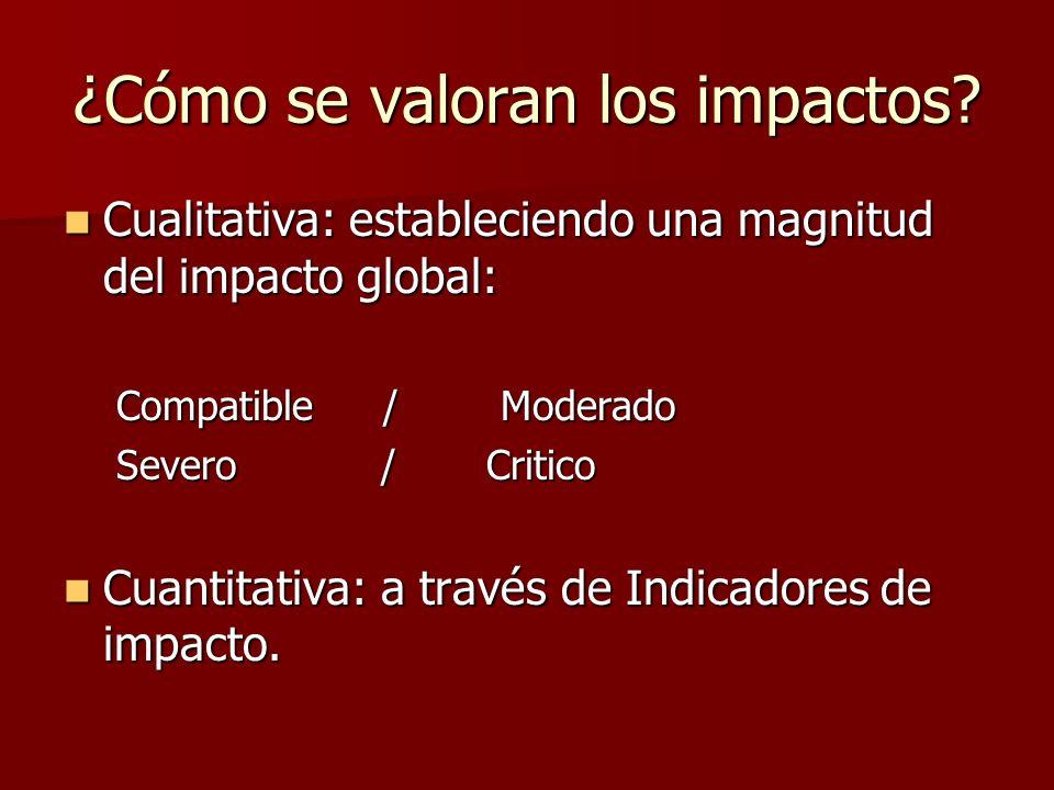 ¿Cómo se valoran los impactos