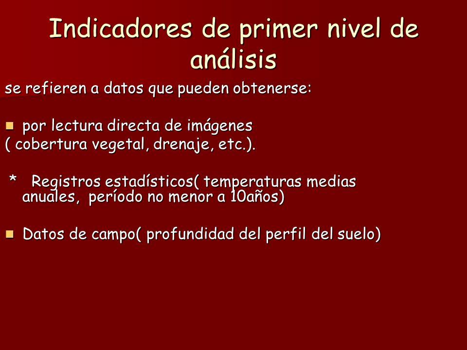 Indicadores de primer nivel de análisis