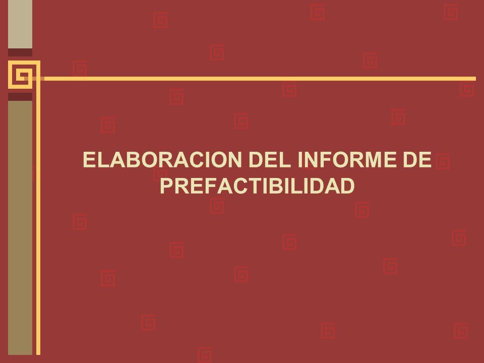 ELABORACION DEL INFORME DE PREFACTIBILIDAD