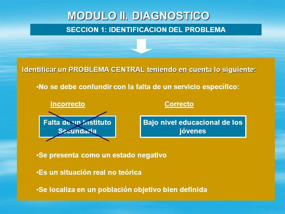 MODULO II. DIAGNOSTICO SECCION 1: IDENTIFICACION DEL PROBLEMA